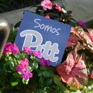 Somos Pitt (We are Pitt)