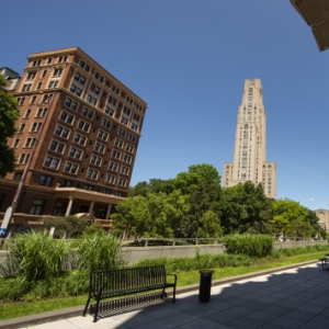 Summer view of the Cathedral and William Pitt Union