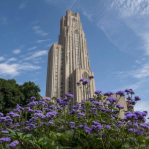 Cathedral of Learning and violet flowers