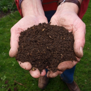Man holding composted dirt in his hands