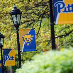 Lamp posts adorned with the Pitt script and panther logo