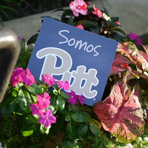 Somos Pitt (We are Pitt) sign in a flower planter