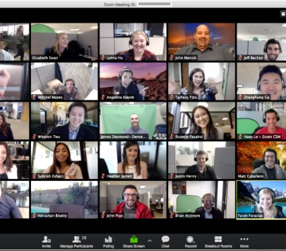 screen capture of a Zoom meeting with lots of participants
